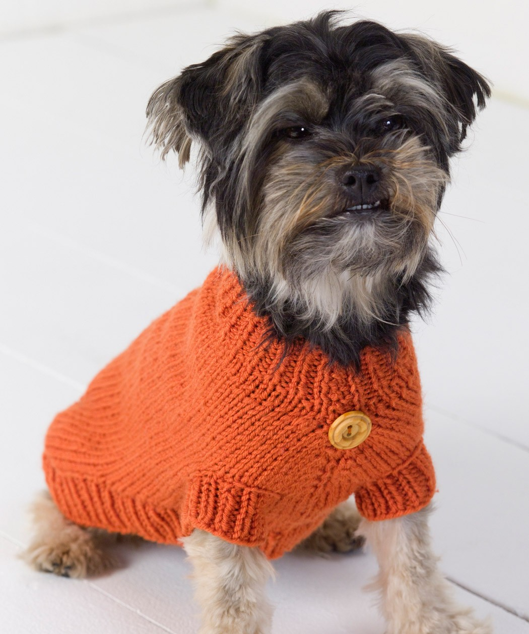 Knitting Pattern For Puppy Dogs : Dog Sweater Knitting Pattern Cute Small Dog Sweater Dog ...
