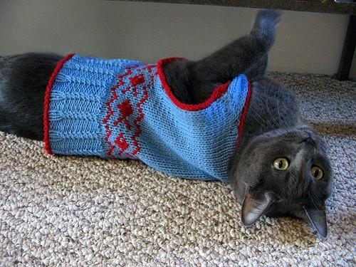 Cat Sweater Knitting Pattern | A Knitting Blog