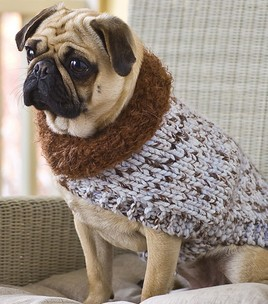 Comfy Canine Dog Sweater Knitting Pattern Photo