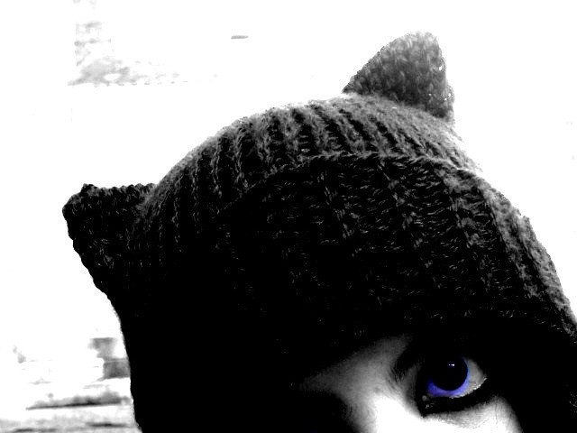 Knitting Pattern For Kitty Hat : Knitted Cat Hat Patterns A Knitting Blog