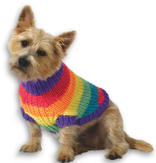 Knitting Pattern For A Small Dog Coat : Dog Sweater Knitting Pattern A Knitting Blog